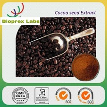 Cocoa Extract Powder from INDIA