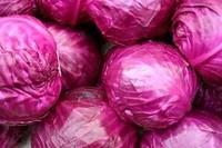 Farm Red Fresh Cabbage
