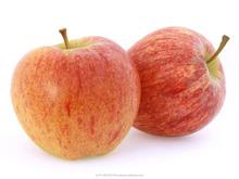 High quality Polish Apples GALA ROYAL