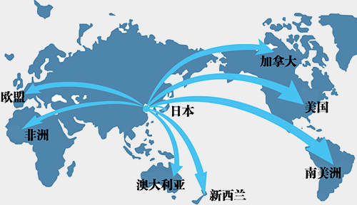 network7.jpg