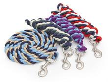 Caballo multicolor cuerda del plomo