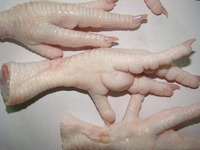 Grade A Halal Frozen Chicken Feet / Grade A Halal Frozen Chicken Meat global exporters !!! TOP SUPPLIER !!!