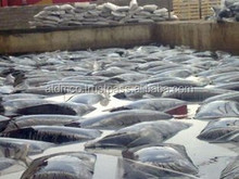 OXIDIZED BITUMEN IN 25KG CRAFT OR PLASTIC BAG 115/15 95/25 105/35 85/25 90/40 90/15