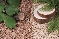bulk wood pellet for export