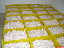 Top Quality Grade A Frozen Chicken feet for Sale !!! Top Supplier !!!