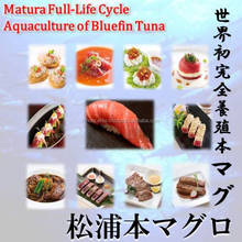 Matsuura bluefin tuna is a luxury food I want to eating a nice dining table and chair.