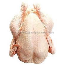 Halal Frozen Chicken Breast,Skinless Boneless