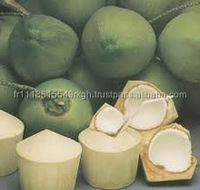 Thai fresh coconut water , Fresh coconut Diamond cut / Polished Young Coconut, Coconut water