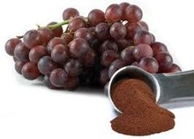Best Quality Grape Seed Extract Up to 95%