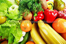 FRESH VEGETABLE & FRUITS SUPPLIER IN INDIA
