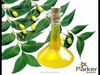 New Product - Cold Pressed Neem Seed Oil