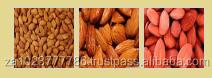 Fresh Almond/Raw Organic Almond Grade A Hot Sales