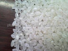 High quality Japonica rice 5% broken- New crop( hieu.phuongquan@gmail.com)