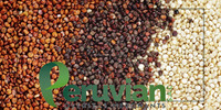 Organic Quinoa Cereal
