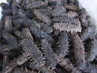 Dry sea cucumber