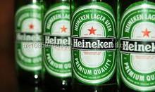 Dutch Premium Beer 500ml Can