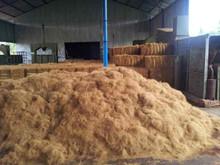 coco fiber/coconut fiber/