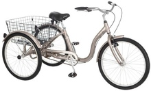 Adult tricycle bicycle
