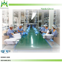 Top Quality Good Service Malaysia Nitrile Glove Manufacturer
