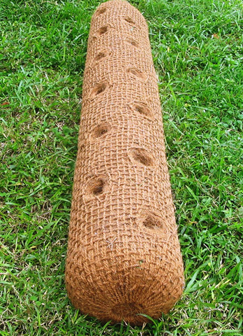 Coconut Logs