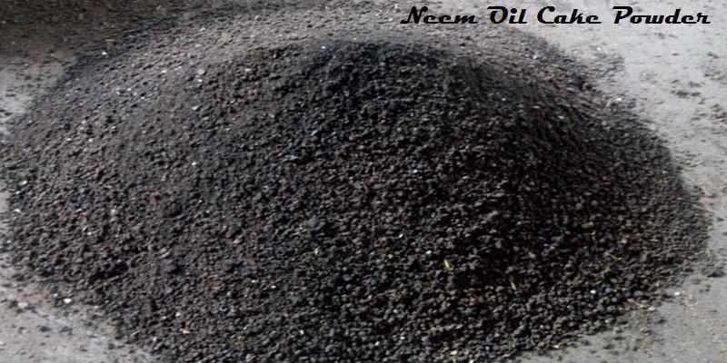 Neem Oil Cake Buyers