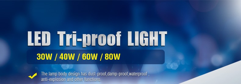 IP65 fluorescent tri-proof 30W suspended led workshop linear light 2016 New diesign