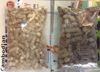 Tapioca (cassava) hard and soft pellets