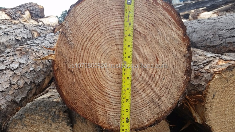 Pine Logs Buy Syp Logs Product On