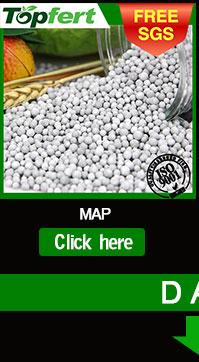 DAP 18-46 fertilizer grade