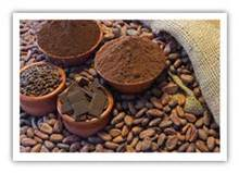 Natural Cocoa Powder 10-12%Fat / Private Label 100% Pure & Natural Cocoa Powder
