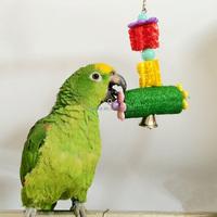 Colorful Parrot Bite-resistant Toys Loofah Sponge Pet Bird Cage Cockatiel Parakeet Plant Fibre Crafts