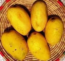 Indian Fresh mango