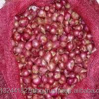 small onins/indian shallot/south indian small onions/sambar onion/shallot exporters/small onion exporters
