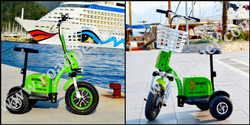 2014 model Roadpet ginger mypet zappy three wheel electric scooter