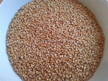 Best Quality Gold Susame Seed/Turkish Susame product