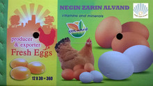 FRESH SHELL TABLE EGGS (WHITE) PACKED IN30 EGGS IN A PAPER TRAY 12 PAPER TRAYSIN ONE EXPORT PAPER CARTON 360 EGGS