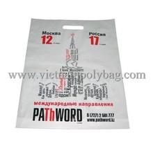 gravure printing nylon shopping bag