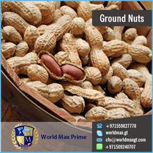 White Best Shaped Groundnuts For Sale