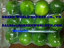 FRESH & FROZEN LEMON WITH HIGH QUALITY