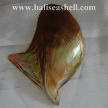 natural mother of pearl wild polished for plate art dish