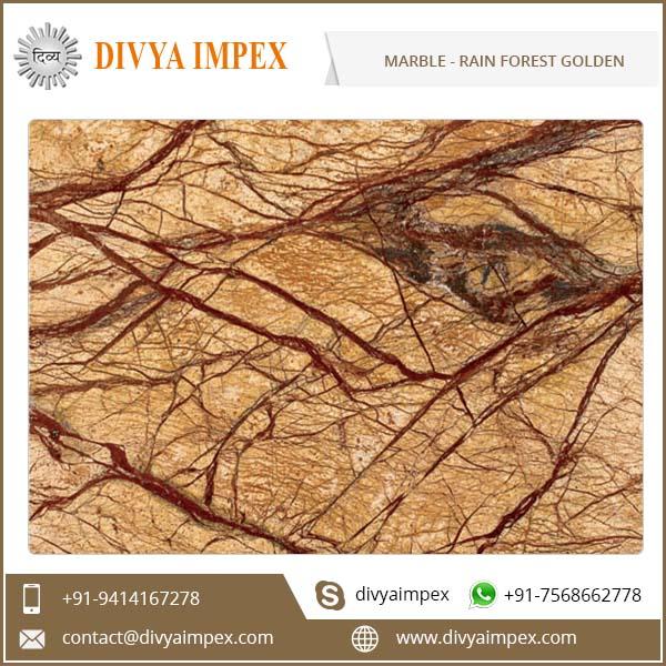divya-impex_indian-marble_rain- forest-golden.jpg