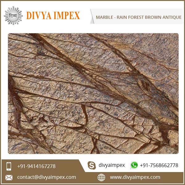 divya-impex_indian-marble_rain-forest-brown-antique.jpg