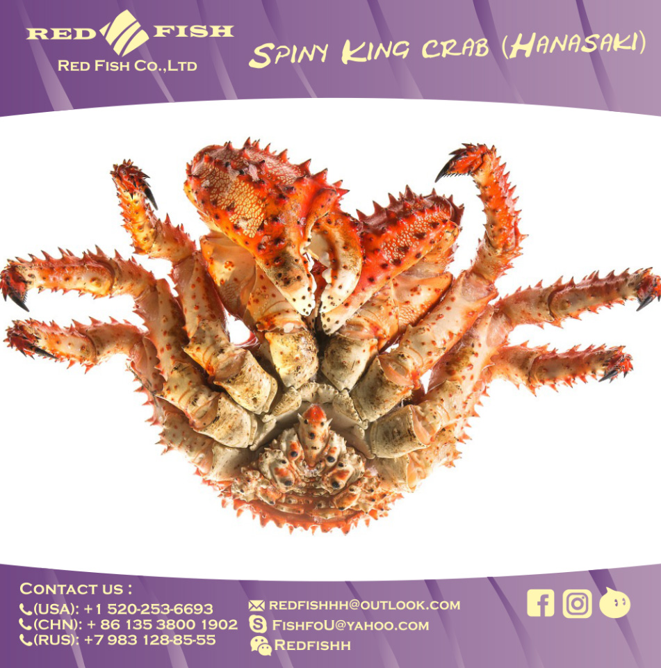 crab-4.jpg