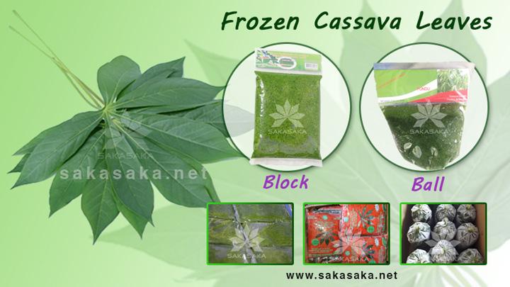 cassava-leaves-750.jpg