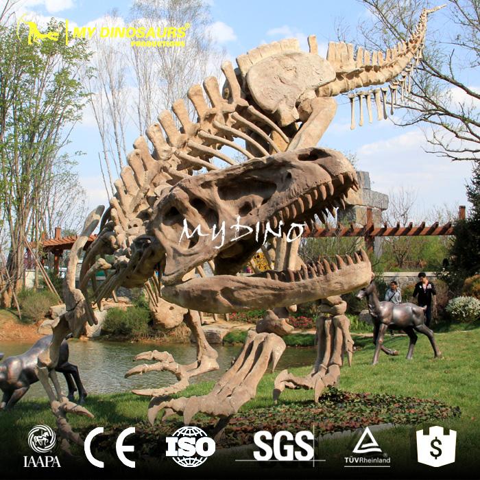 dinosaur1 fossil.jpg